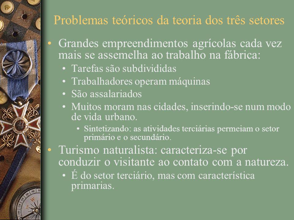 Problemas teóricos da teoria dos três setores Grandes empreendimentos agrícolas cada vez mais se assemelha ao trabalho na fábrica: Tarefas são subdivi