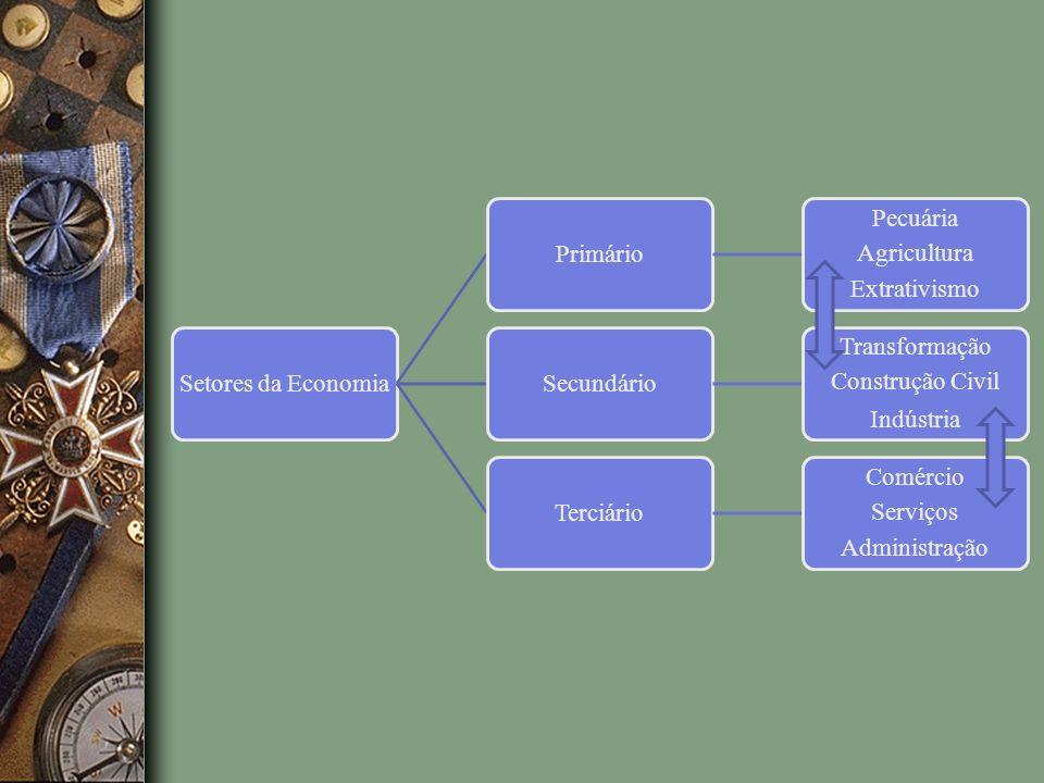 Setores da EconomiaPrimário Pecuária Agricultura Extrativismo Secundário Transformação Construção Civil Indústria Terciário Comércio Serviços Administ