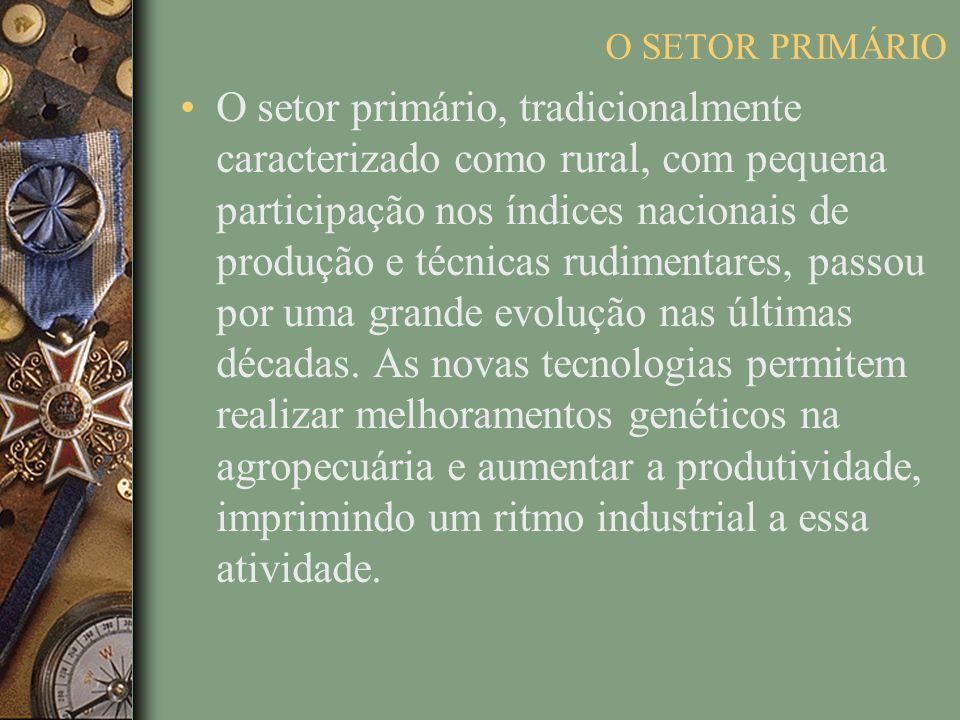 O setor primário, tradicionalmente caracterizado como rural, com pequena participação nos índices nacionais de produção e técnicas rudimentares, passou por uma grande evolução nas últimas décadas.
