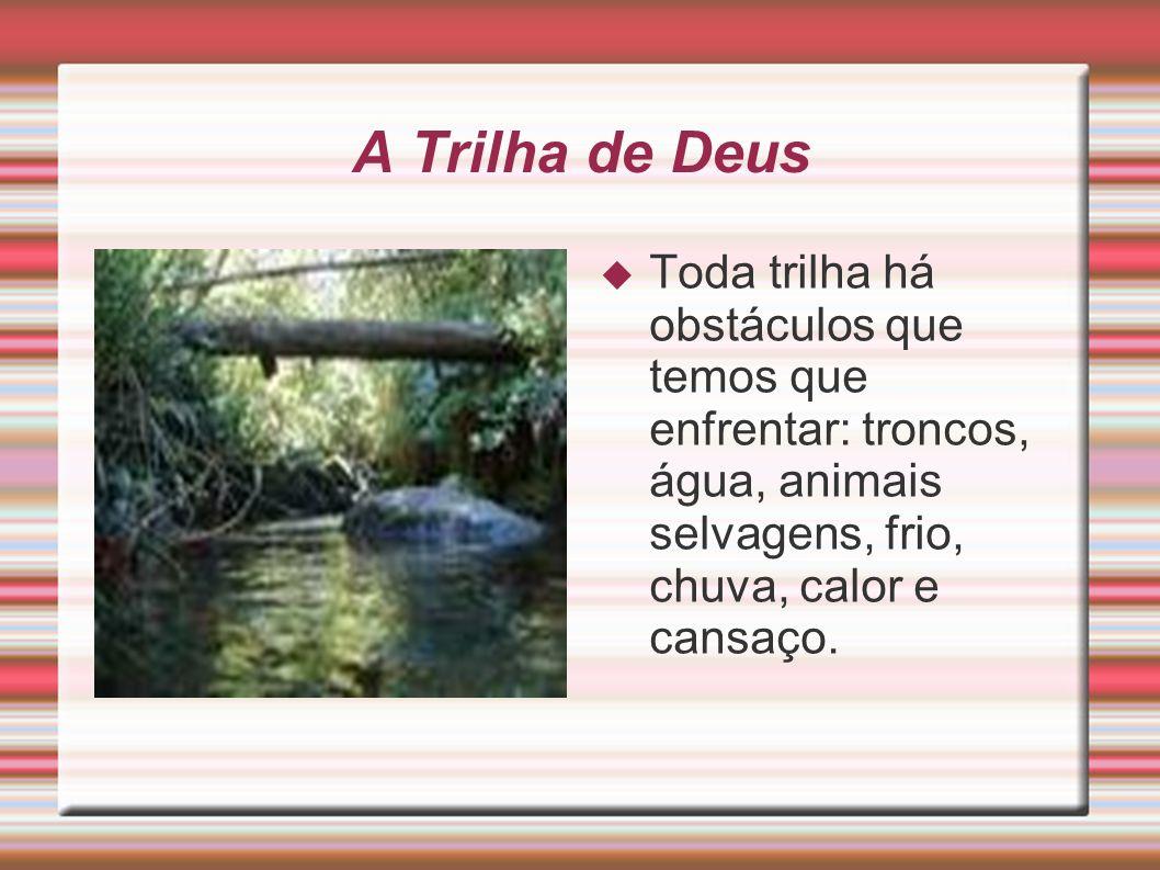 A Trilha de Deus Toda trilha há obstáculos que temos que enfrentar: troncos, água, animais selvagens, frio, chuva, calor e cansaço.