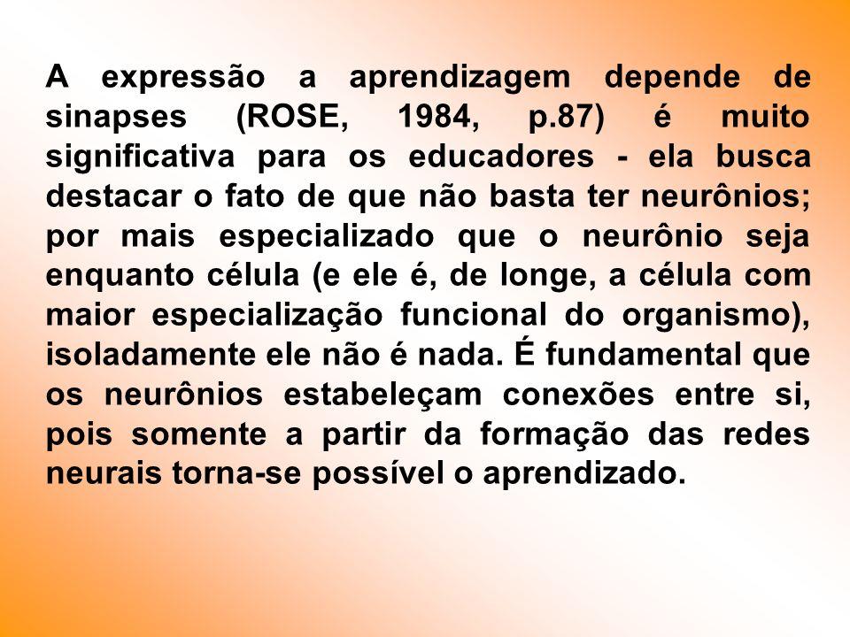 A expressão a aprendizagem depende de sinapses (ROSE, 1984, p.87) é muito significativa para os educadores - ela busca destacar o fato de que não bast