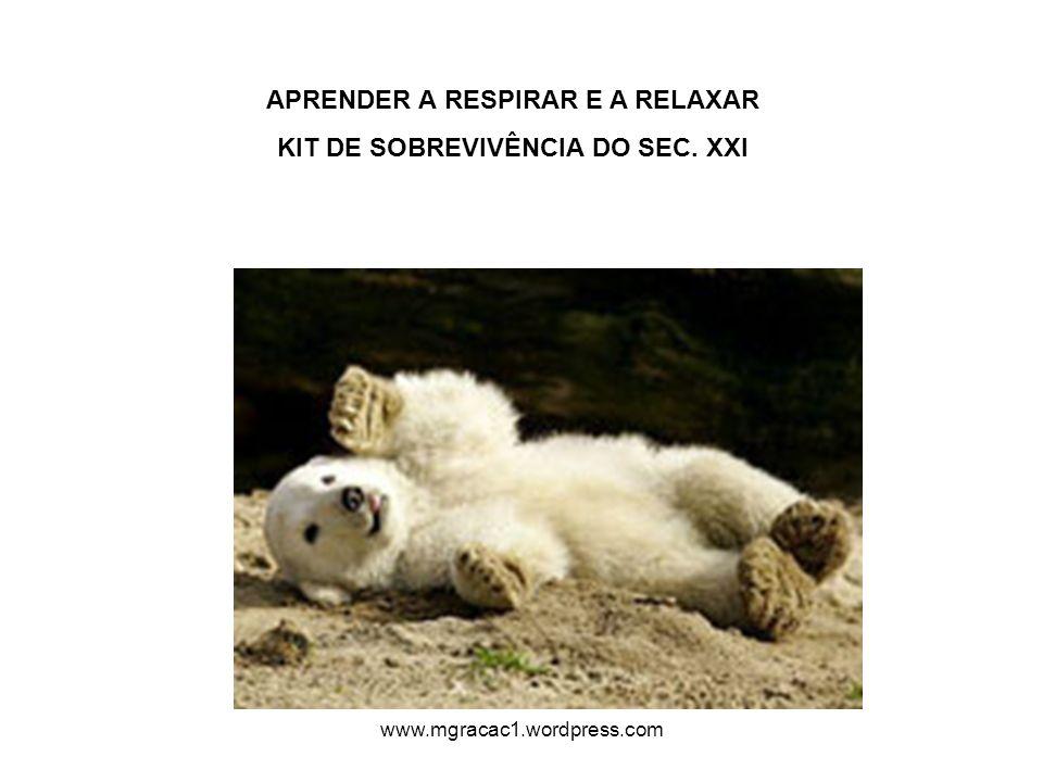 APRENDER A RESPIRAR E A RELAXAR KIT DE SOBREVIVÊNCIA DO SEC. XXI www.mgracac1.wordpress.com