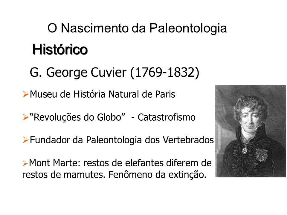 O Nascimento da Paleontologia Histórico G. George Cuvier (1769-1832) Museu de História Natural de Paris Revoluções do Globo - Catastrofismo Fundador d