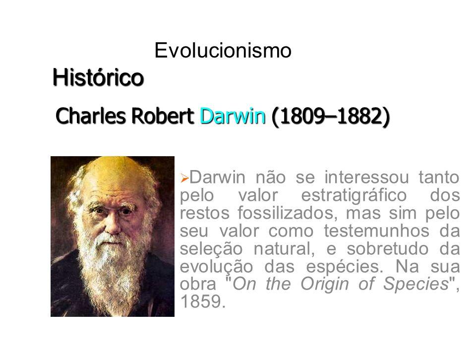 Darwin não se interessou tanto pelo valor estratigráfico dos restos fossilizados, mas sim pelo seu valor como testemunhos da seleção natural, e sobret