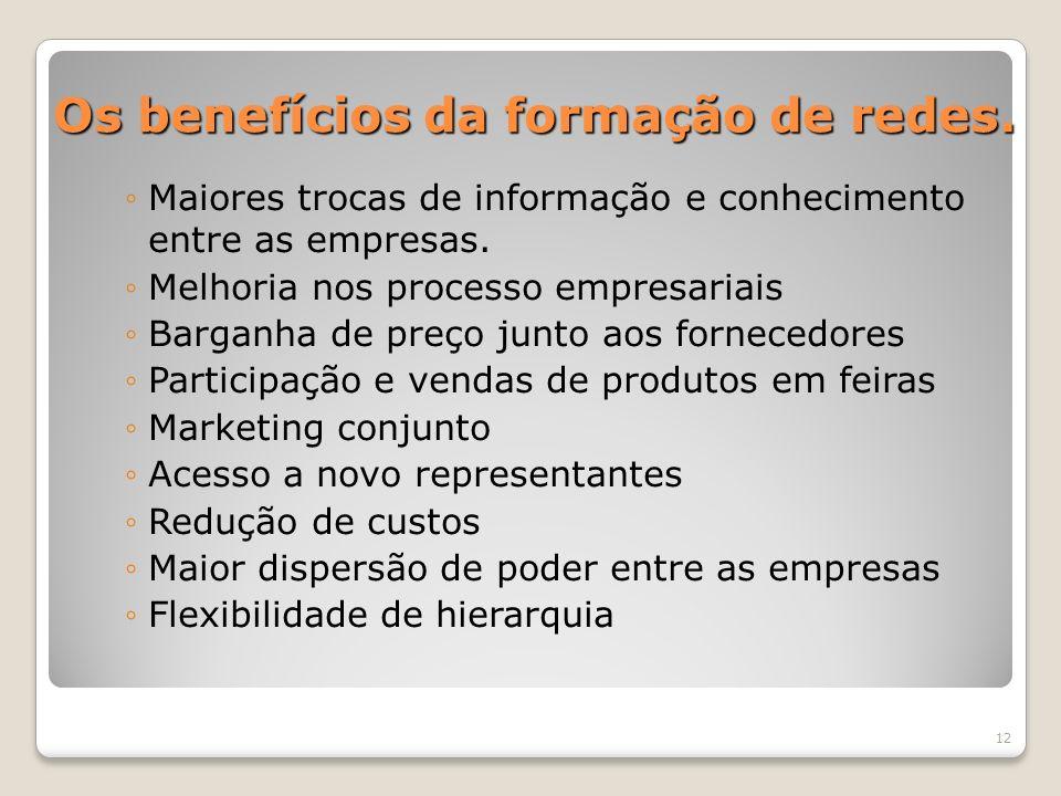 Os benefícios da formação de redes. Maiores trocas de informação e conhecimento entre as empresas. Melhoria nos processo empresariais Barganha de preç