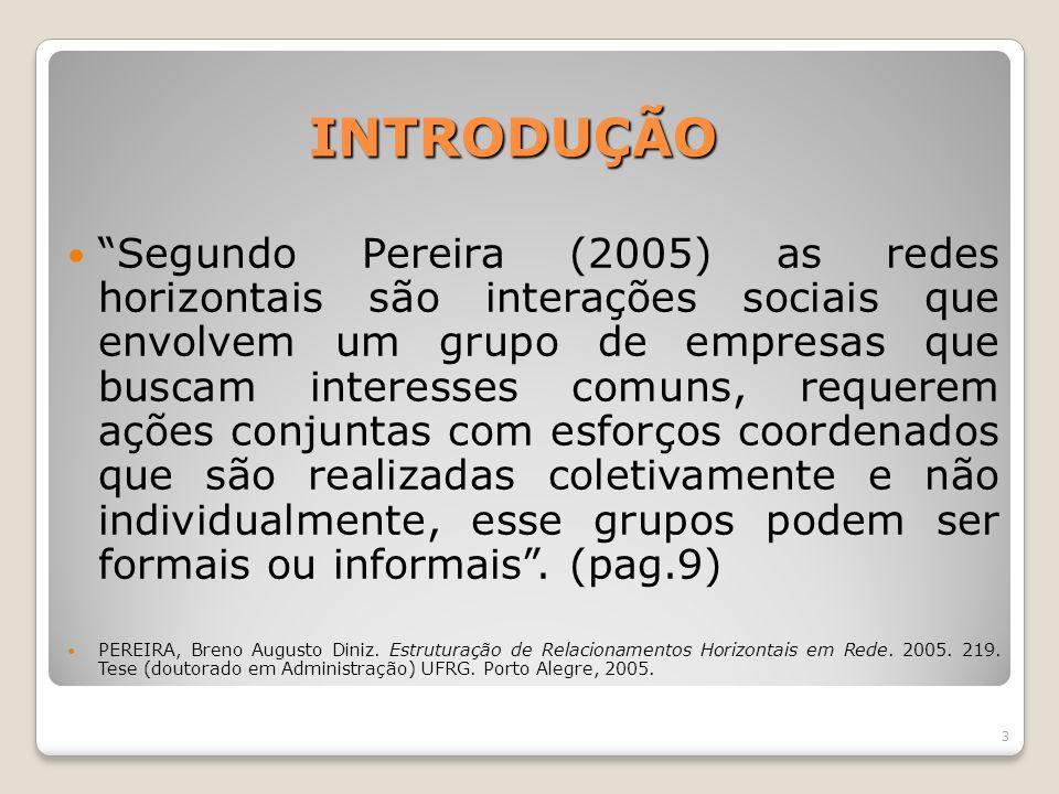 INTRODUÇÃO Segundo Pereira (2005) as redes horizontais são interações sociais que envolvem um grupo de empresas que buscam interesses comuns, requerem
