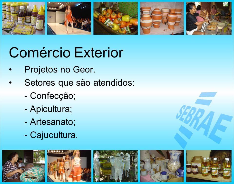 Comércio Exterior Projetos no Geor. Setores que são atendidos: - Confecção; - Apicultura; - Artesanato; - Cajucultura.