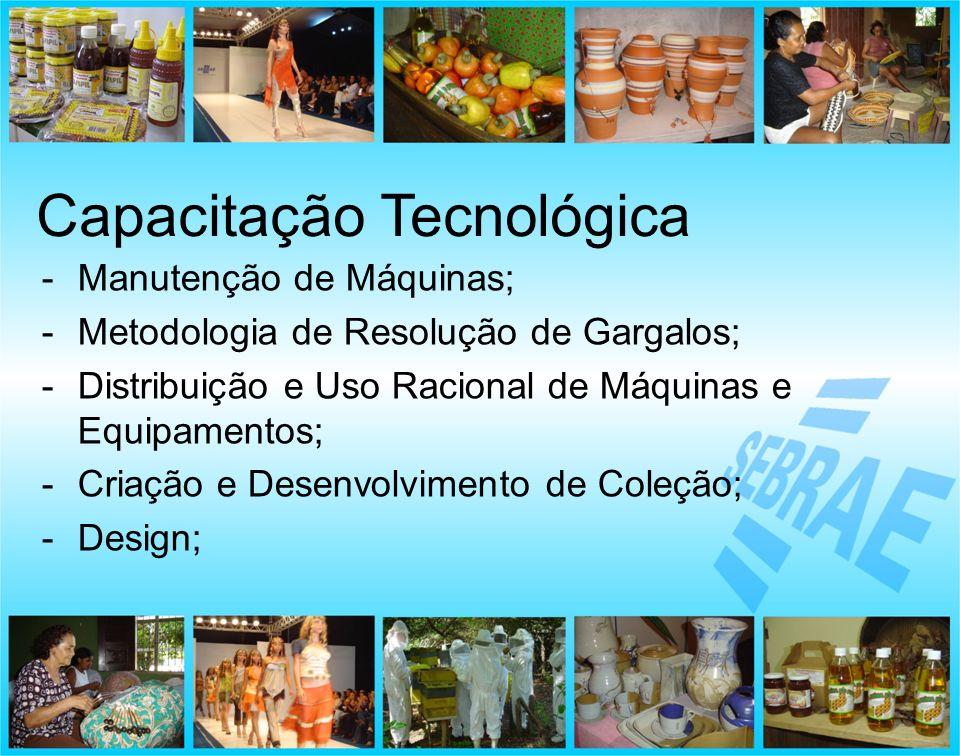 -Manutenção de Máquinas; -Metodologia de Resolução de Gargalos; -Distribuição e Uso Racional de Máquinas e Equipamentos; -Criação e Desenvolvimento de
