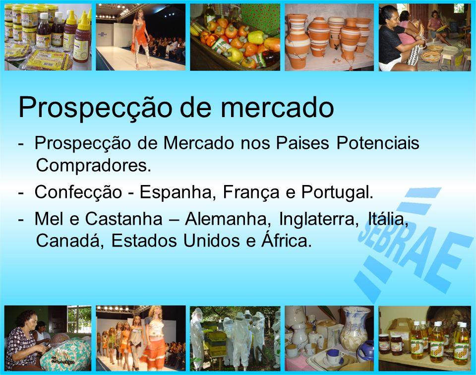 - Prospecção de Mercado nos Paises Potenciais Compradores. - Confecção - Espanha, França e Portugal. - Mel e Castanha – Alemanha, Inglaterra, Itália,