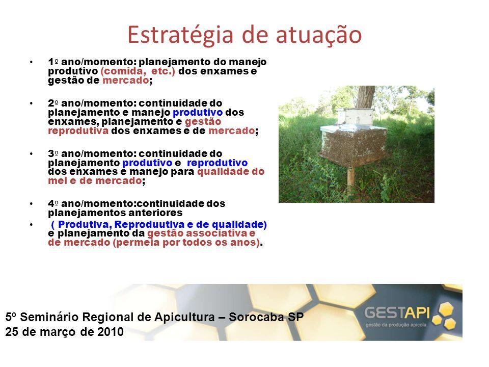5º Seminário Regional de Apicultura – Sorocaba SP 25 de março de 2010 Estratégia de atuação 1 º ano/momento: planejamento do manejo produtivo (comida,