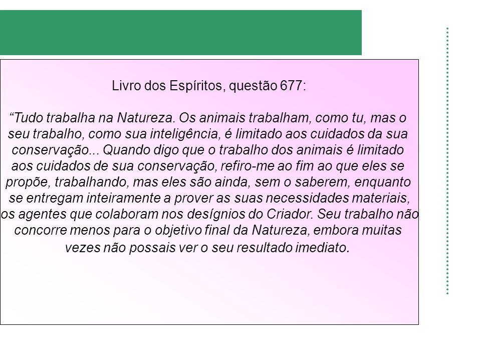 Livro dos Espíritos, questão 677: Tudo trabalha na Natureza. Os animais trabalham, como tu, mas o seu trabalho, como sua inteligência, é limitado aos