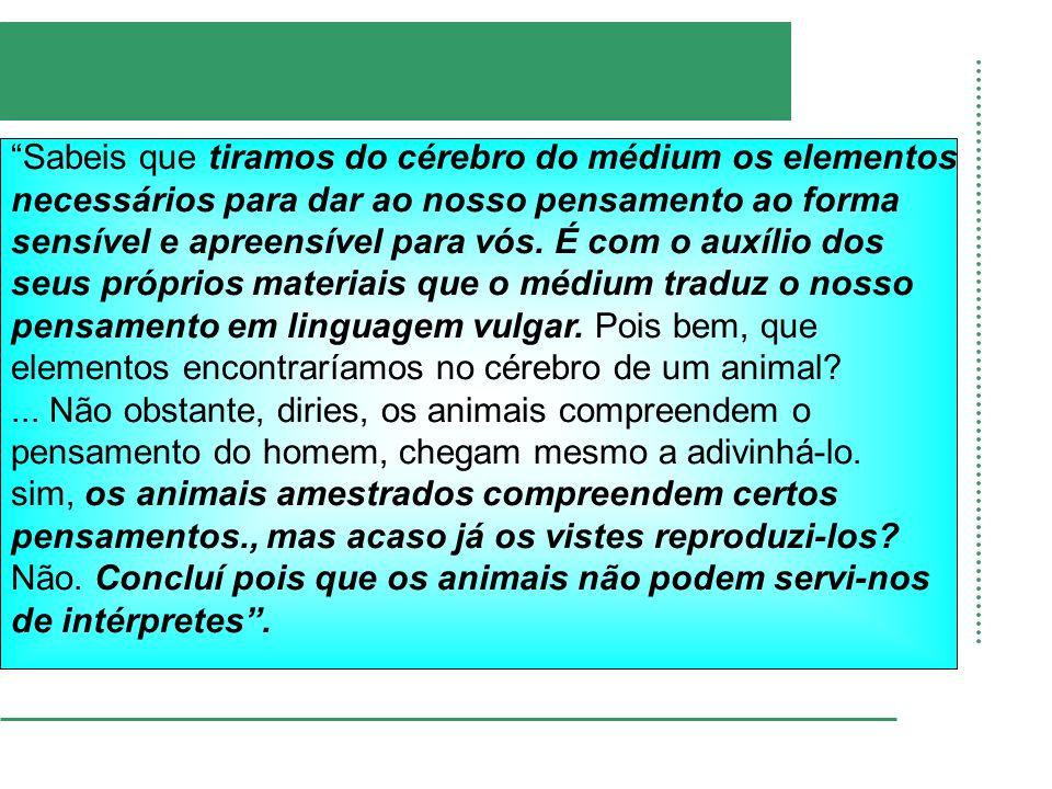 Qual a diferença entre a alma dos animais e a alma dos homens?