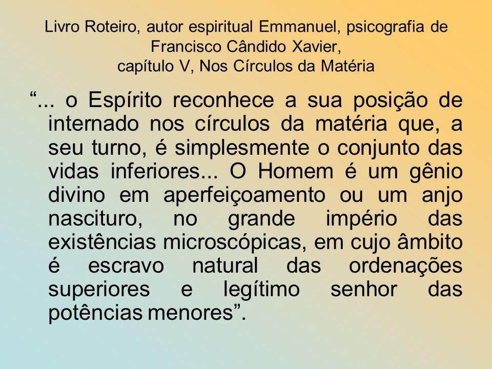 Livro Roteiro, autor espiritual Emmanuel, psicografia de Francisco Cândido Xavier, capítulo V, Nos Círculos da Matéria...