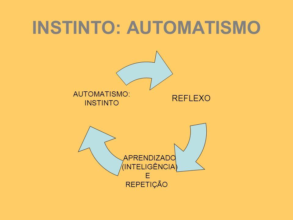 INSTINTO: AUTOMATISMO REFLEXO APRENDIZADO (INTELIGÊNCIA) E REPETIÇÃO AUTOMATISMO: INSTINTO