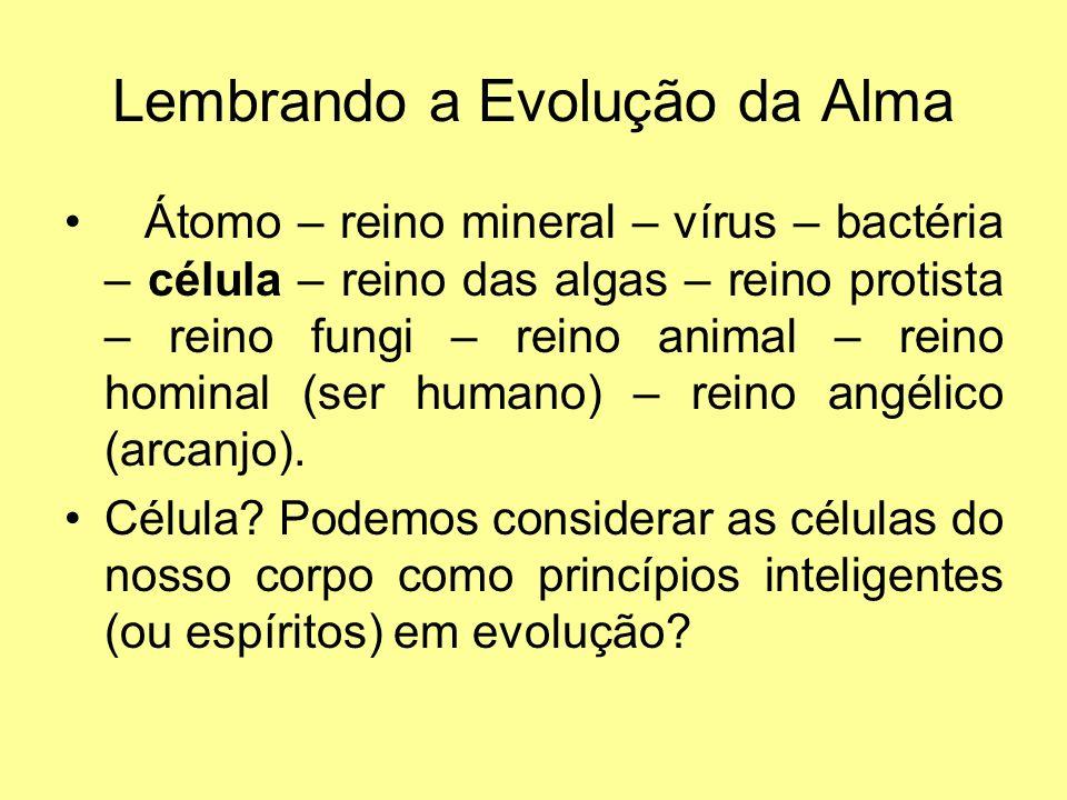 Lembrando a Evolução da Alma Átomo – reino mineral – vírus – bactéria – célula – reino das algas – reino protista – reino fungi – reino animal – reino hominal (ser humano) – reino angélico (arcanjo).