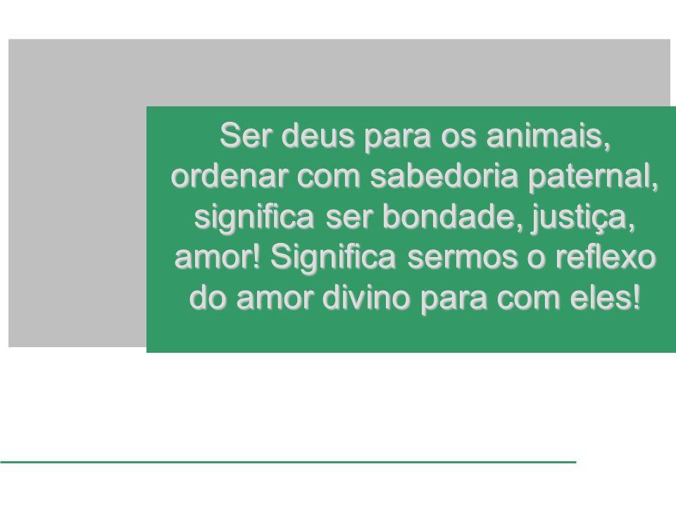 Ser deus para os animais, ordenar com sabedoria paternal, significa ser bondade, justiça, amor! Significa sermos o reflexo do amor divino para com ele