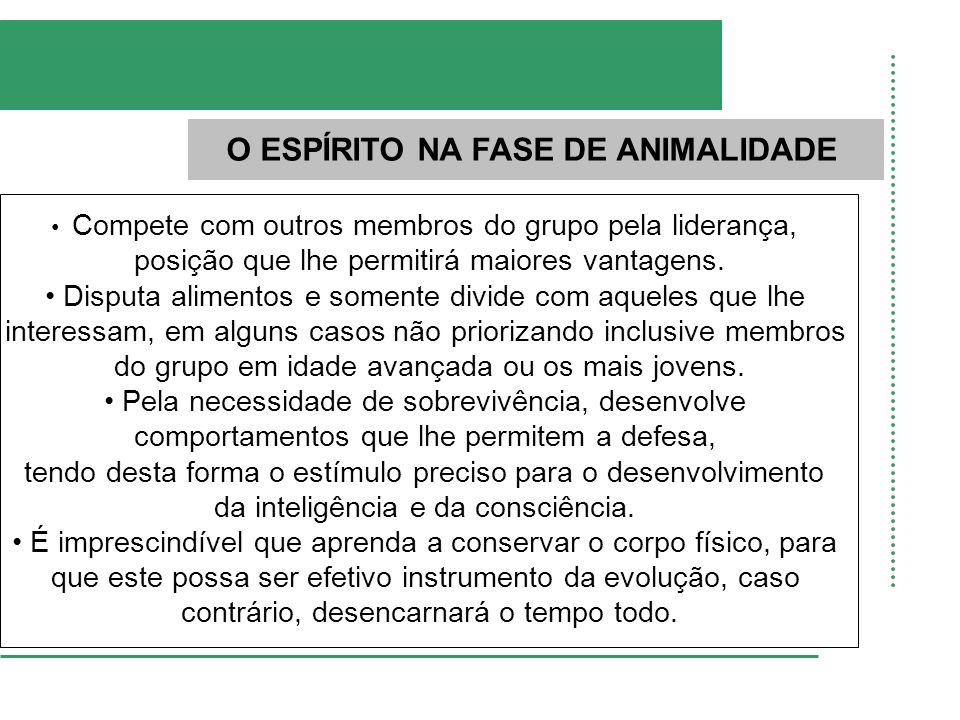 O ESPÍRITO NA FASE DE ANIMALIDADE Compete com outros membros do grupo pela liderança, posição que lhe permitirá maiores vantagens. Disputa alimentos e