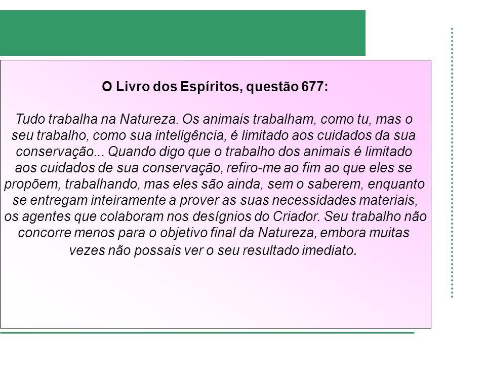 O Livro dos Espíritos, questão 677: Tudo trabalha na Natureza. Os animais trabalham, como tu, mas o seu trabalho, como sua inteligência, é limitado ao