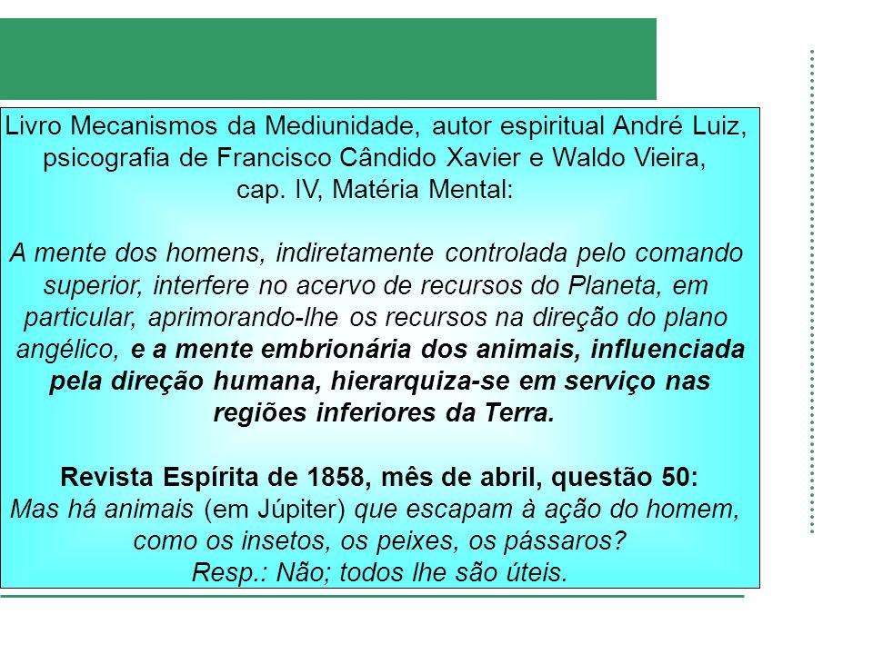Livro Mecanismos da Mediunidade, autor espiritual André Luiz, psicografia de Francisco Cândido Xavier e Waldo Vieira, cap. IV, Matéria Mental: A mente