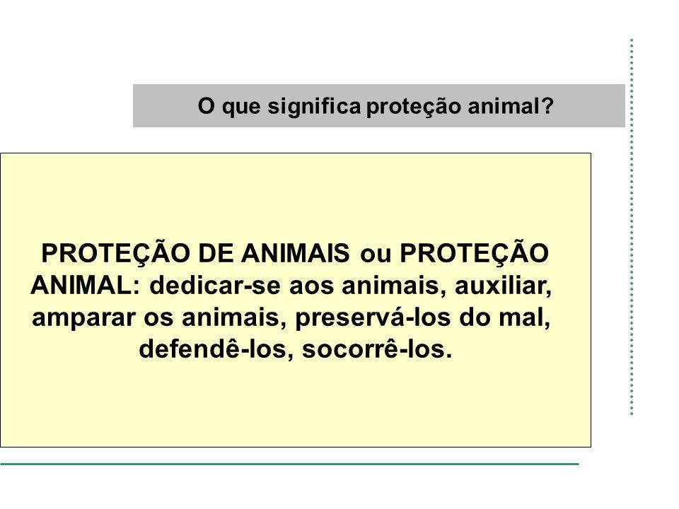 O que significa proteção animal? PROTEÇÃO DE ANIMAIS ou PROTEÇÃO ANIMAL: dedicar-se aos animais, auxiliar, amparar os animais, preservá-los do mal, de