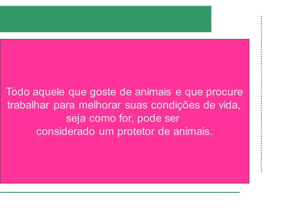 Todo aquele que goste de animais e que procure trabalhar para melhorar suas condições de vida, seja como for, pode ser considerado um protetor de anim