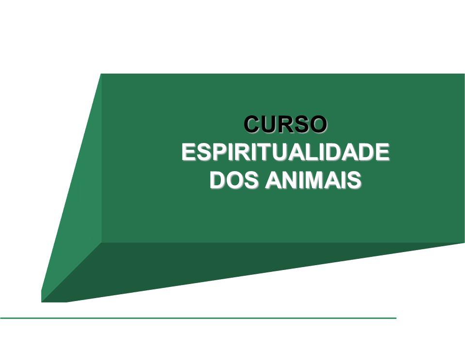 CURSOESPIRITUALIDADE DOS ANIMAIS