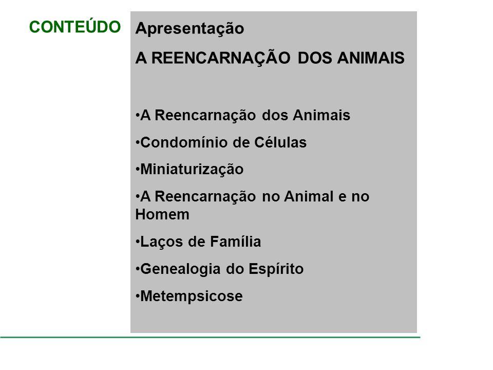 CONTEÚDO Apresentação A REENCARNAÇÃO DOS ANIMAIS A Reencarnação dos Animais Condomínio de Células Miniaturização A Reencarnação no Animal e no Homem L