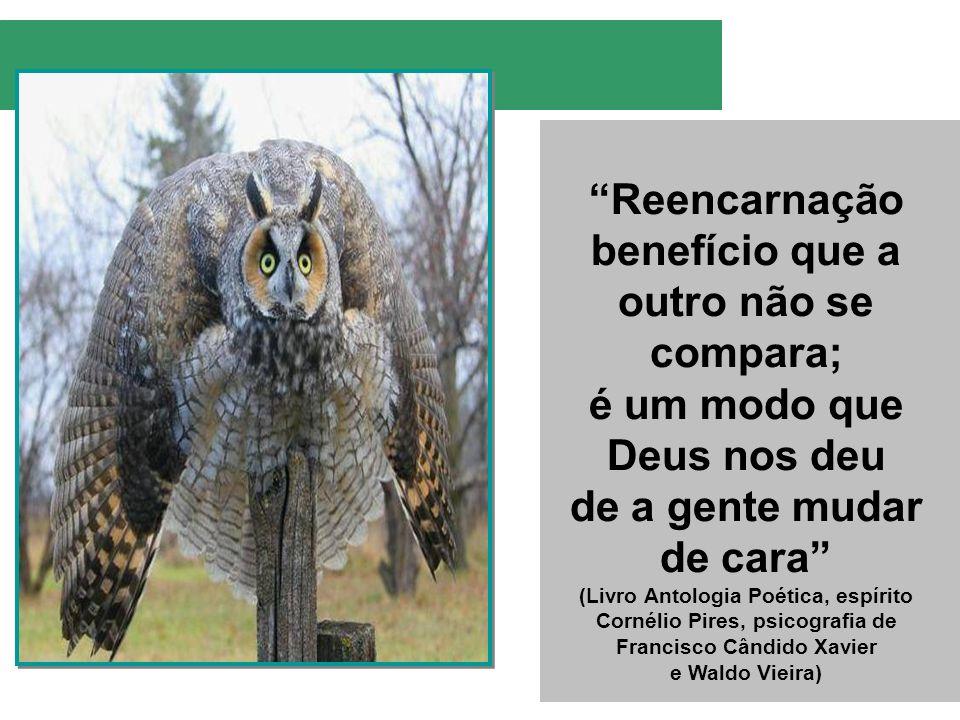 Reencarnação benefício que a outro não se compara; é um modo que Deus nos deu de a gente mudar de cara (Livro Antologia Poética, espírito Cornélio Pir