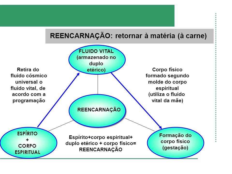 CONDOMÍNIO DE CÉLULAS Livro Evolução em Dois Mundos, autor André Luiz, psicografia de Francisco Cândido Xavier e Waldo Vieira, cap.