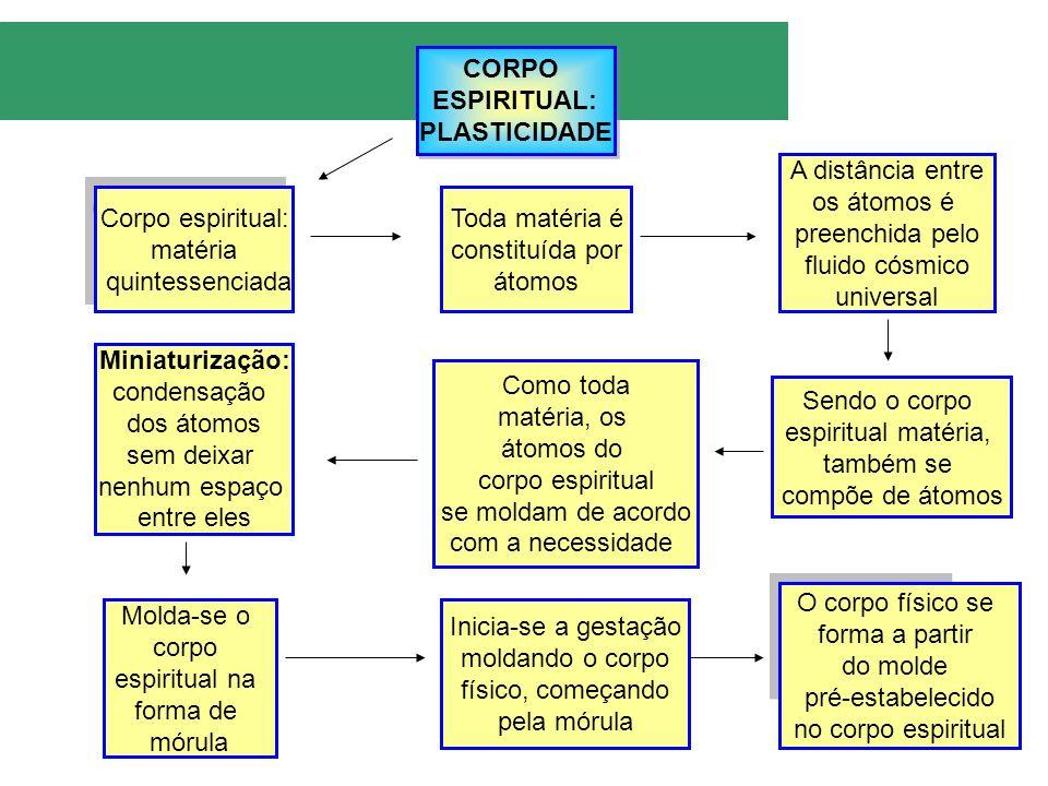 CORPO ESPIRITUAL: PLASTICIDADE CORPO ESPIRITUAL: PLASTICIDADE Corpo espiritual: matéria quintessenciada Corpo espiritual: matéria quintessenciada Toda