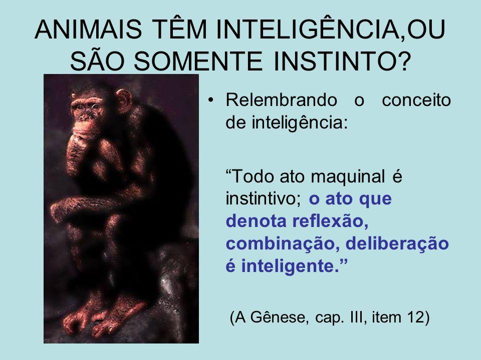 O Livro dos Espíritos, questão 593 Podemos dizer que os animais só agem por instinto.
