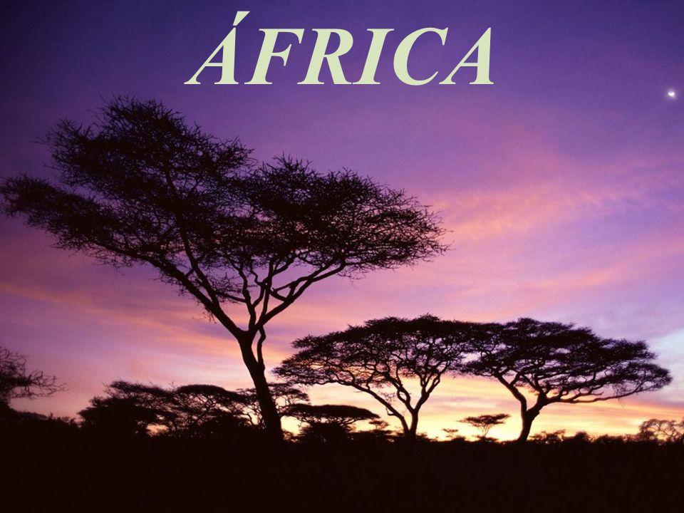 O chifre da África Região composta pela Etiópia, Eritréia, Somália e Sudão; Passou pela colonização britânica e italiana.