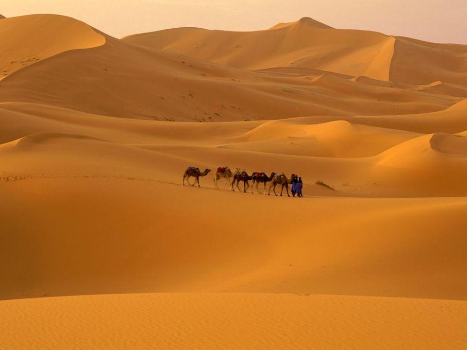 Região do Magreb Pertence a África Setentrional com os países Marrocos, Argélia e Tunísia; Foi colonizado pela França; África Centro-Oriental Também f