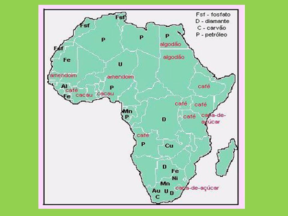 África setentrional Predomínio de relevo planáltico em estrutura recente; Clima árido com destaque para o deserto do Saara; Importante estrategicamente por se localizar próximo a Europa; Dois grupos étnicos principais (os Camitas e os Semitas); Economia baseada no comércio, agricultura e exploração mineral.