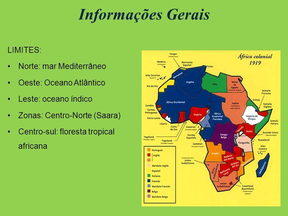 Informações Gerais LIMITES: Norte: mar Mediterrâneo Oeste: Oceano Atlântico Leste: oceano índico Zonas: Centro-Norte (Saara) Centro-sul: floresta tropical africana