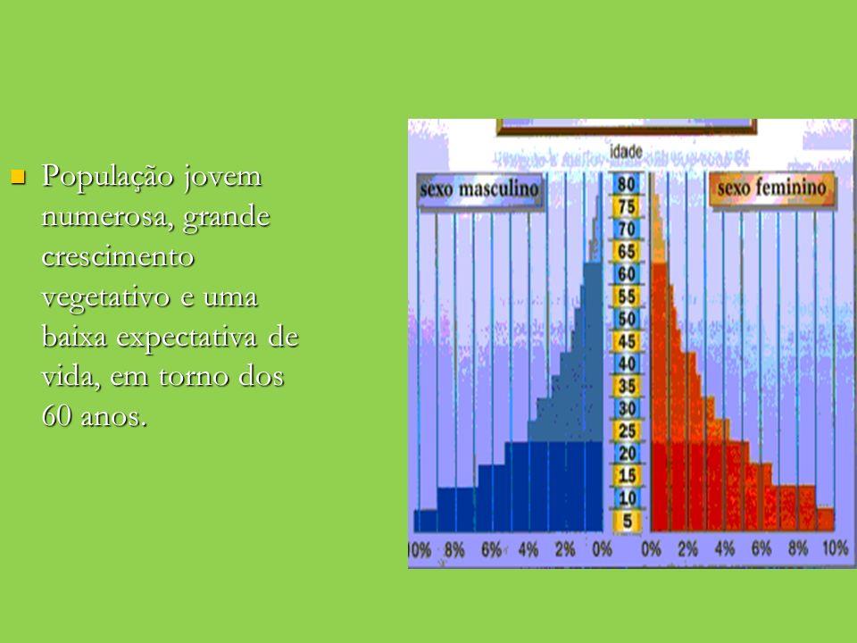 População jovem numerosa, grande crescimento vegetativo e uma baixa expectativa de vida, em torno dos 60 anos. População jovem numerosa, grande cresci