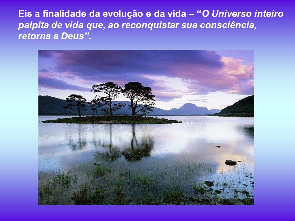 Eis a finalidade da evolução e da vida – O Universo inteiro palpita de vida que, ao reconquistar sua consciência, retorna a Deus.