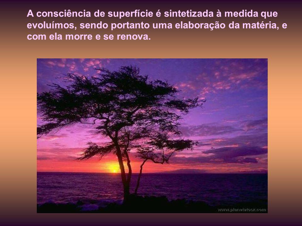 A consciência de superfície é sintetizada à medida que evoluímos, sendo portanto uma elaboração da matéria, e com ela morre e se renova.