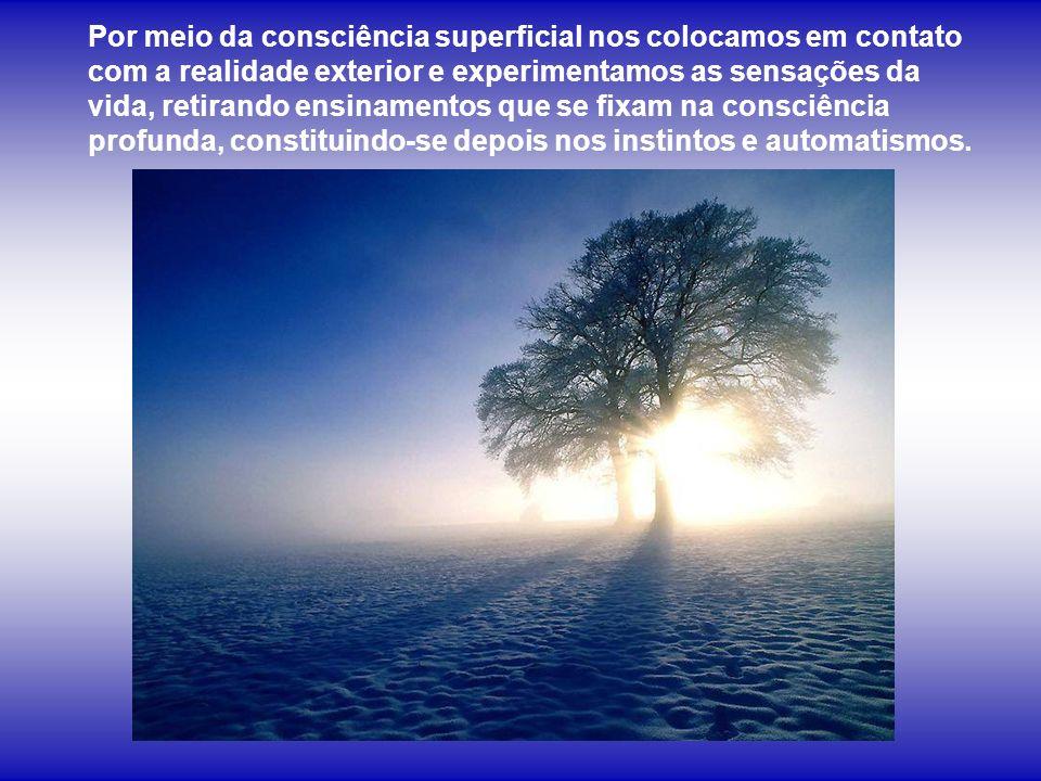 Por meio da consciência superficial nos colocamos em contato com a realidade exterior e experimentamos as sensações da vida, retirando ensinamentos que se fixam na consciência profunda, constituindo-se depois nos instintos e automatismos.