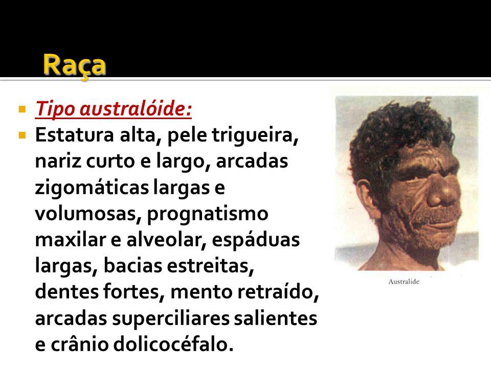 Tipo australóide: Estatura alta, pele trigueira, nariz curto e largo, arcadas zigomáticas largas e volumosas, prognatismo maxilar e alveolar, espáduas