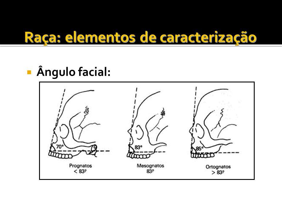 Ângulo facial: