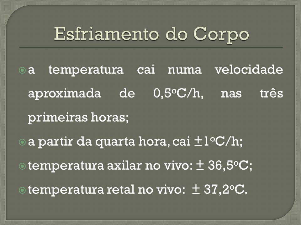 a temperatura cai numa velocidade aproximada de 0,5 o C/h, nas três primeiras horas; a partir da quarta hora, cai ±1 o C/h; temperatura axilar no vivo