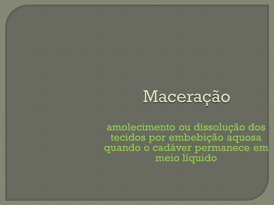 Maceração amolecimento ou dissolução dos tecidos por embebição aquosa quando o cadáver permanece em meio líquido