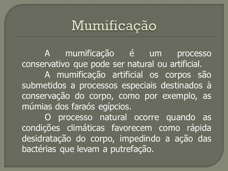 A mumificação é um processo conservativo que pode ser natural ou artificial. A mumificação artificial os corpos são submetidos a processos especiais d