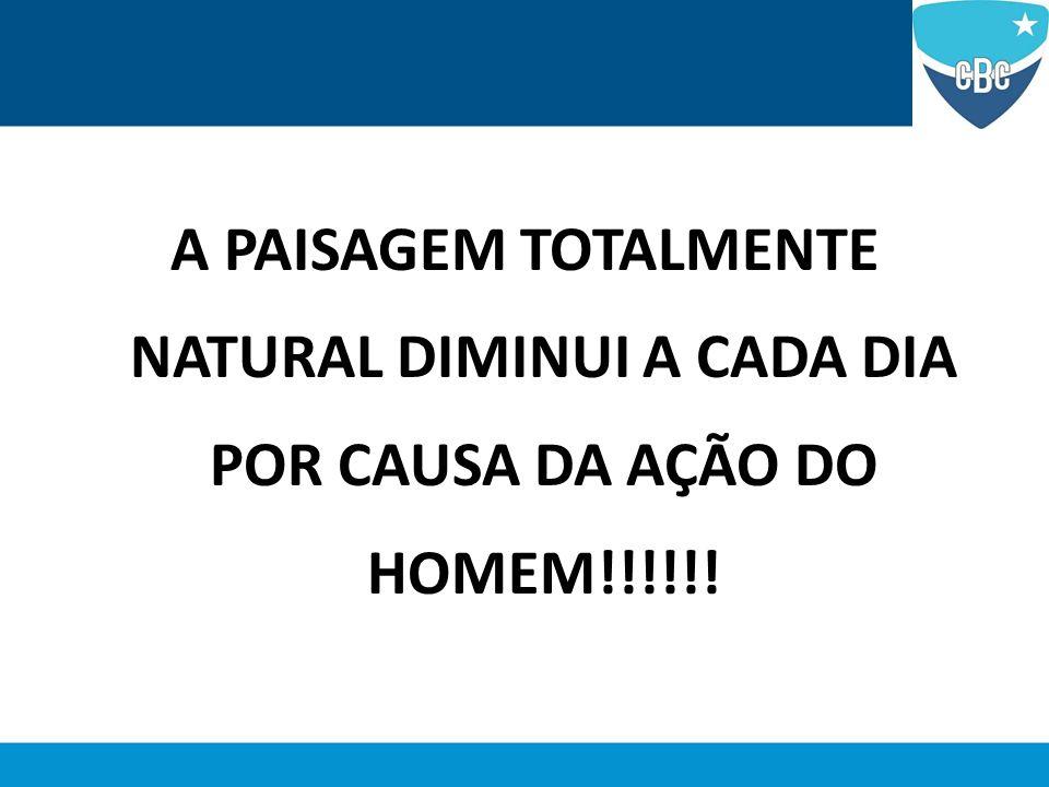 A PAISAGEM TOTALMENTE NATURAL DIMINUI A CADA DIA POR CAUSA DA AÇÃO DO HOMEM!!!!!!