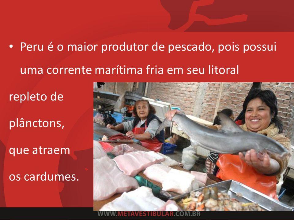 Peru é o maior produtor de pescado, pois possui uma corrente marítima fria em seu litoral repleto de plânctons, que atraem os cardumes.
