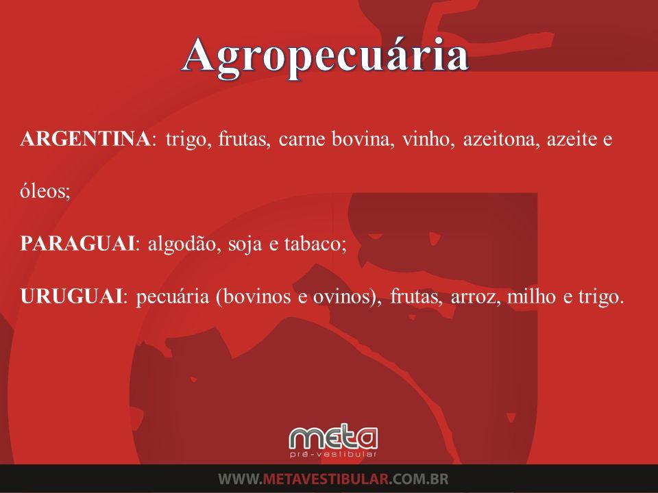 ARGENTINA: trigo, frutas, carne bovina, vinho, azeitona, azeite e óleos; PARAGUAI: algodão, soja e tabaco; URUGUAI: pecuária (bovinos e ovinos), fruta