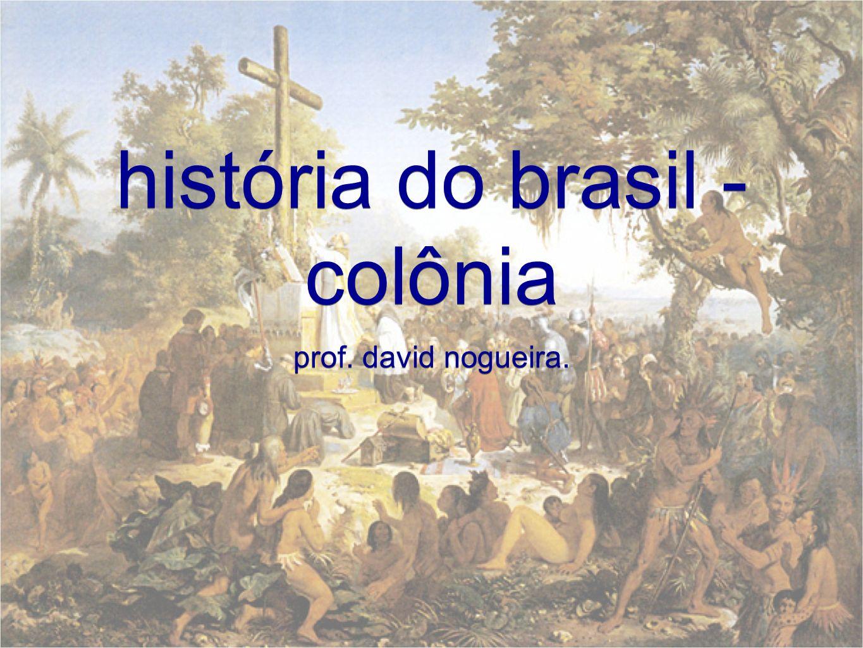 história do brasil - colônia prof. david nogueira.