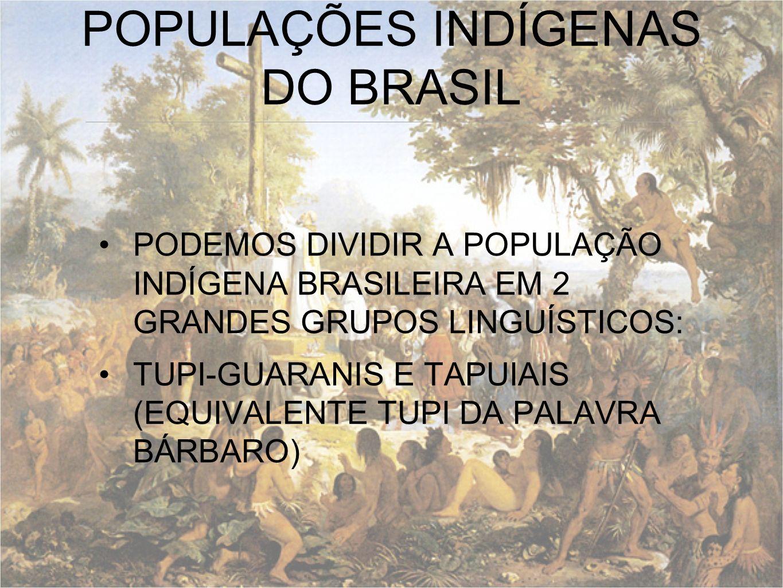 POPULAÇÕES INDÍGENAS DO BRASIL PODEMOS DIVIDIR A POPULAÇÃO INDÍGENA BRASILEIRA EM 2 GRANDES GRUPOS LINGUÍSTICOS: TUPI-GUARANIS E TAPUIAIS (EQUIVALENTE