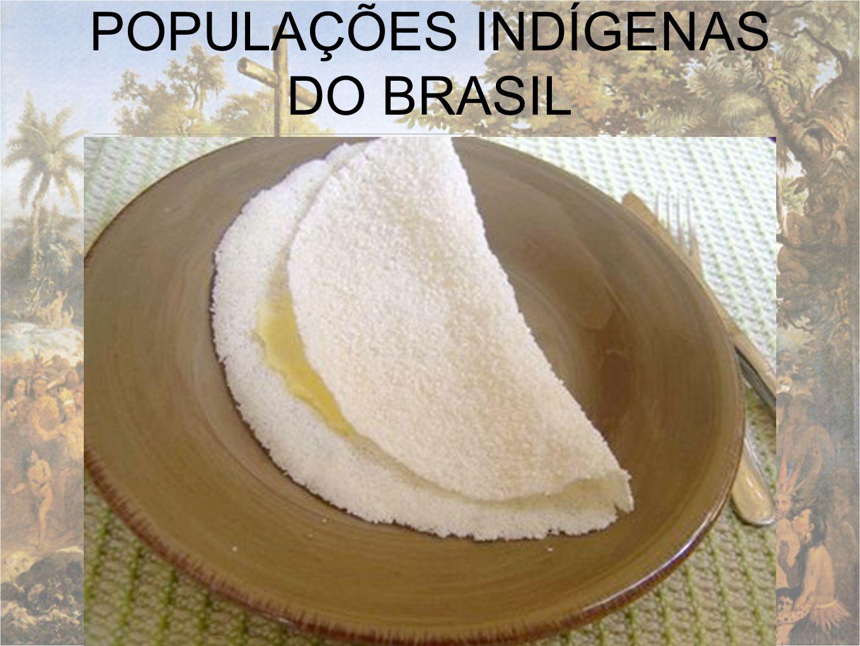 POPULAÇÕES INDÍGENAS DO BRASIL